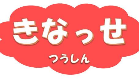 広報誌:きなっせ通信 第17号 (平成31年2月)
