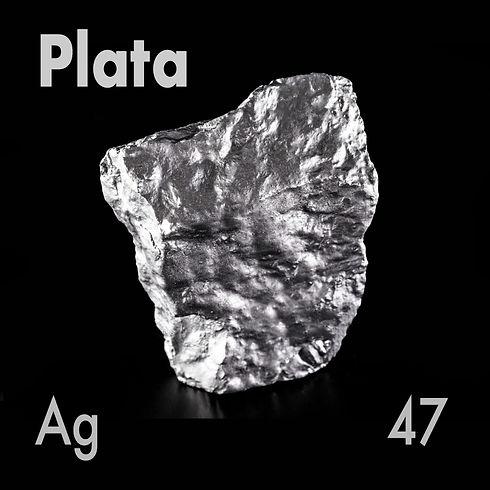 Copia de PLATA  2.jpg