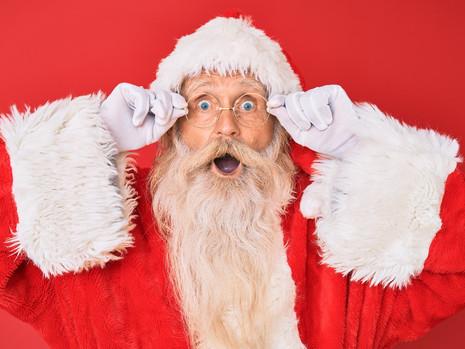 Santa's little helper?