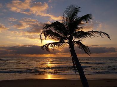 tropical-sunrise-at-the-beach-with-a-sil
