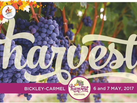 Top 6 picks at this year's Harvest Festival – 6 & 7 May