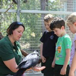 Kanyana Wildlife Rehabilitation Centre