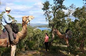 Calamunnda Camel Farm