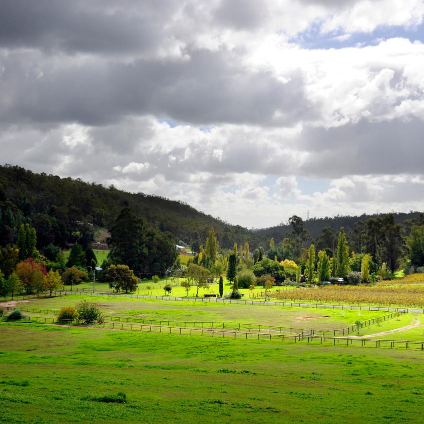 Bickley Valley