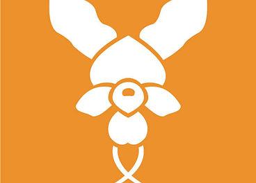Icon Donkey Orchid-01.jpg