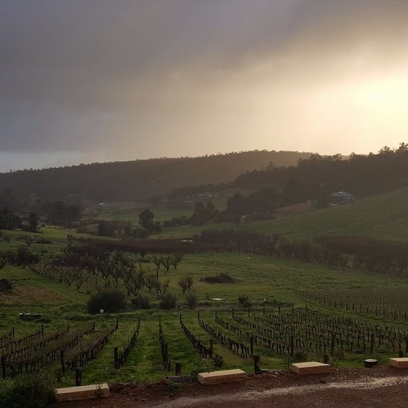 A beautiful, early morning capture at Plume Estate in the Bickley Valley