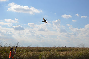Pheasant Club Northern California