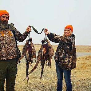 Pheasant Hunting Northern California
