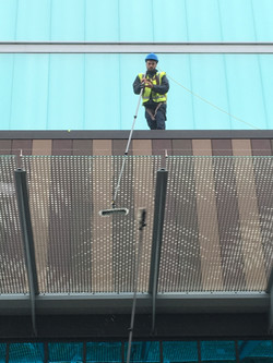 Lexicon - Glass Canopy Clean