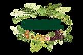 ליאורה חוברה לוגו