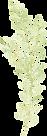 ווקטור דקורטיבי של עלה