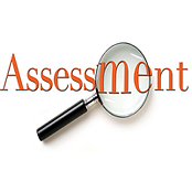 assessment page .png