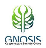 LOGO GNOSIS.jpg