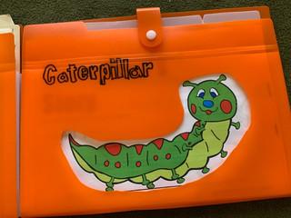 Caterpillars!