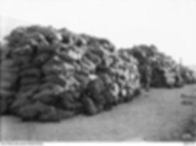 guarding the xmas mail 1918 - Base Post