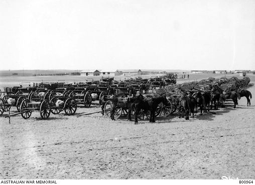 Feb 1919 return of guns and wagons to Or