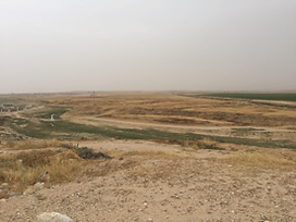 The view from Tel el Saba .  The open gr
