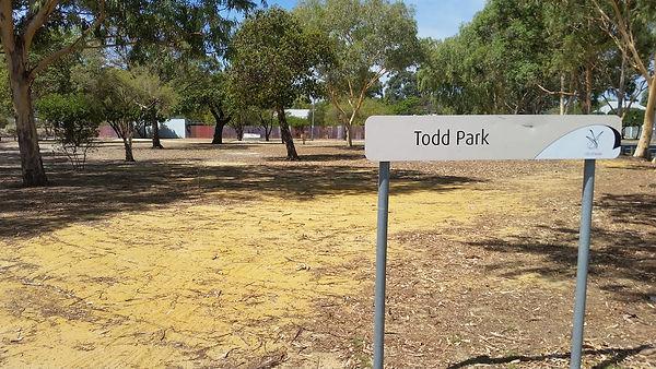 Todd Park.jpg