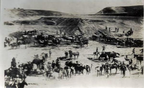 Horse lines in the desert.jpg