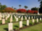 Cairo_war_cemetery_–_Campbell_VC_in_fore