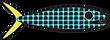 webfish-logo.png