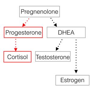 hormone health pathway