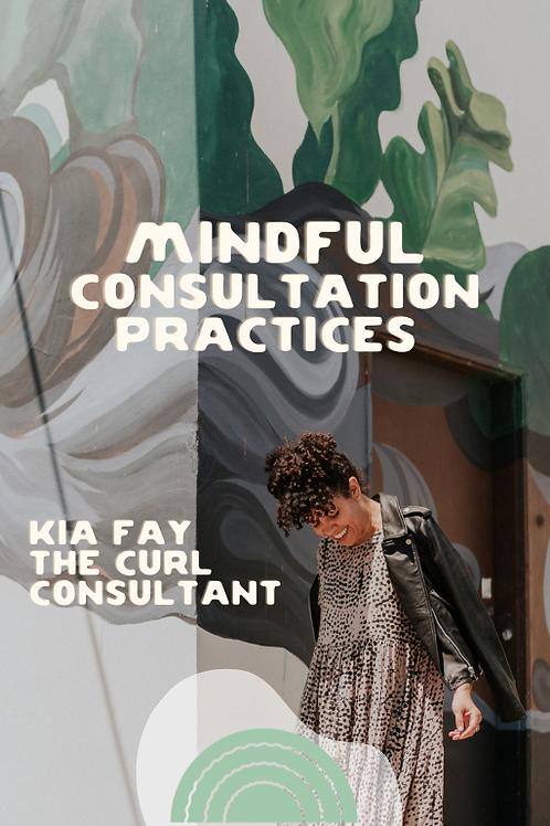 Mindful Consultation Ebook