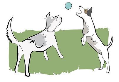 green dogs.jpg