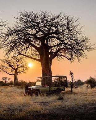 ruaha-national-park-safari-TANZANIA0218.