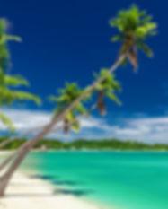 liveaboard-fiji-tropical-island-xxl.jpg