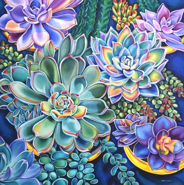 """Succulents Abundant"""