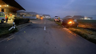 Reitnau: 20-Jährige musste niesen und machte Lenkbewegung - Auto überschlug sich