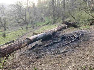 Gränichen: Waldbrand im Häbigerchöpfli