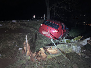 Mandach: 23-jähriger Autofahrer rasierte Baum weg