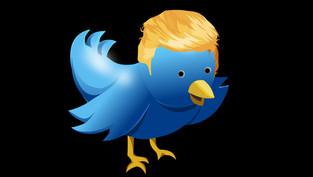 Twitter-Algorithmus verstärkt die rechten Parteien