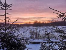 田舎の風景 - 冬の夕焼け