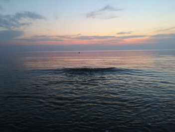 バルト海(ニダ)