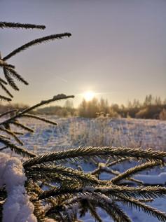 田舎の風景 - 雪と陽と