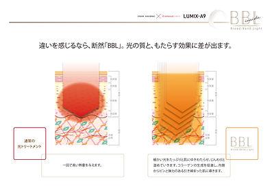 BBL熱量浸透比較.jpg