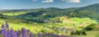 bernau_header-01.jpeg