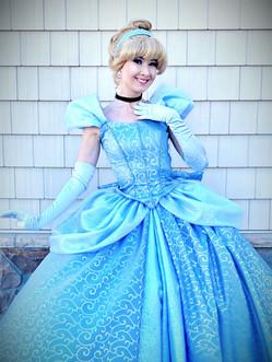 Glass Slipper Princess