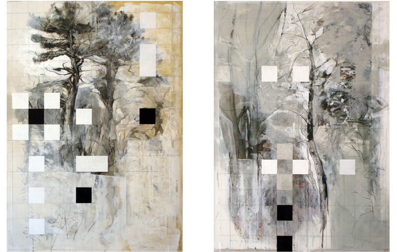 From the series 'The Trees are No Protection', 2010