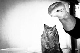 Melanie Vaxevanakis, 'A catch', photographic print