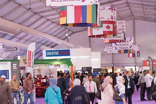 SIAM 19-23 Temmuz 2021 Meknes