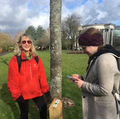 Mapping public engagement in Cardiff Civic Centre with Mari Lowe