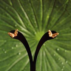 Boucles d'oreilles ailes