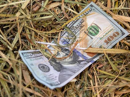 What distinction do profitable dairies hold?