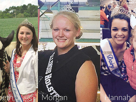 The relevance of dairy princesses