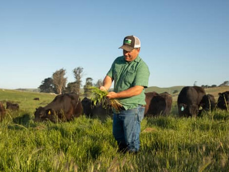 Biden's climate change strategy looks to pay farmers to curb carbon footprint