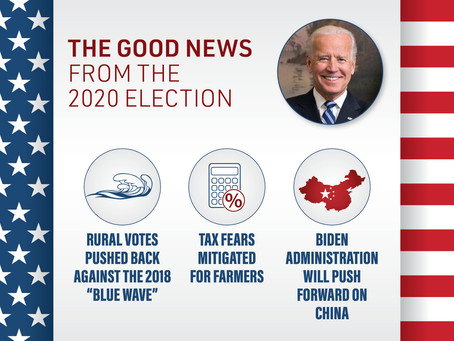 The Good News from the 2020 Election